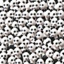 デュプロ パンダの中から犬を探せ【LEGOクイズ】