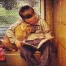 子供の優しさが大人の心を温める【子供と動物画像12選】