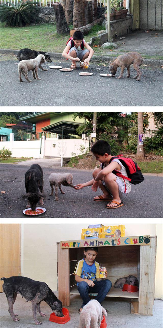 野良犬を保護する子供