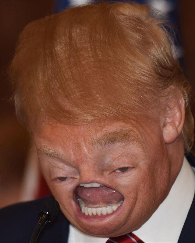 トランプ大統領のコラ画像
