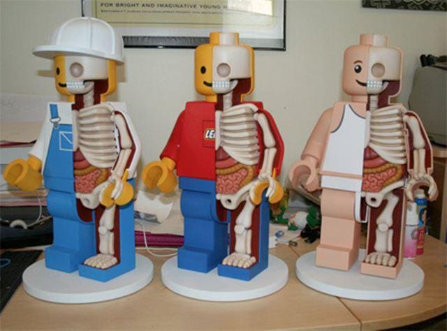 3体のレゴのジャンボフィグの完成品  レゴの解剖学/Lego anatomy