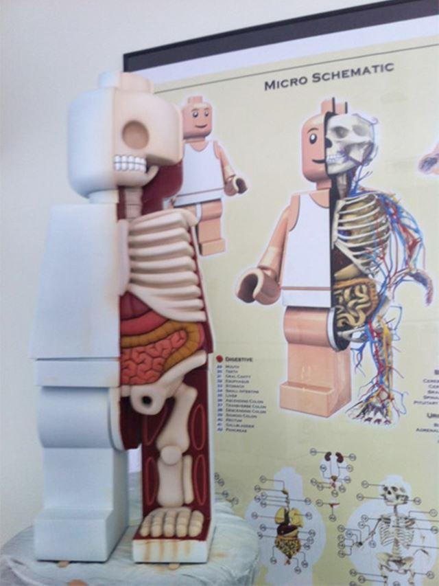 レゴジャンボフィグのの内部 レゴの解剖学/Lego anatomy
