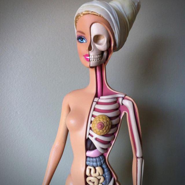 バービー人形の人体模型で解剖学を学ぶ。【バービー人形を改造】