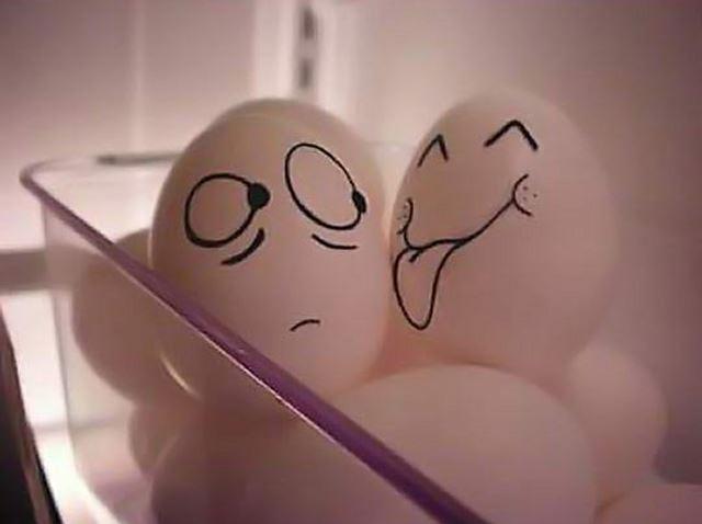 冷蔵庫の卵の姿 卵アート【エッグアート画像】
