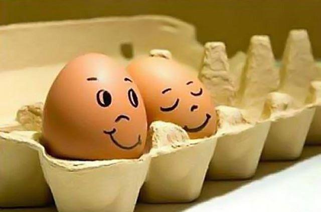 卵アート(エッグアート)に必要なもの