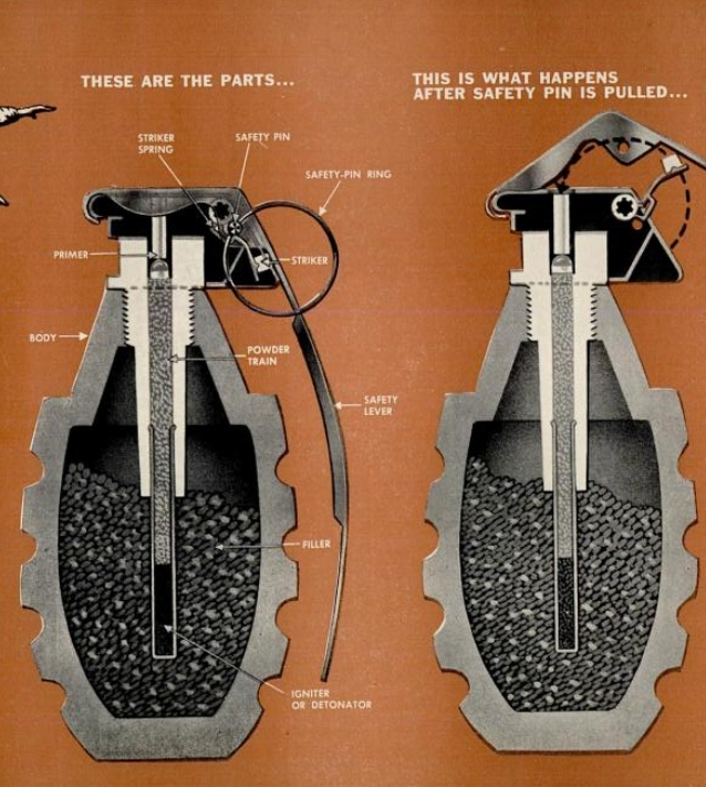 手榴弾/グレネードの断面画像
