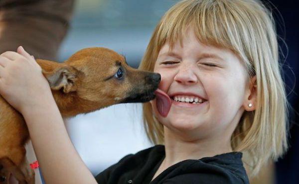 ヘロイン中毒から回復した子犬を抱く少女