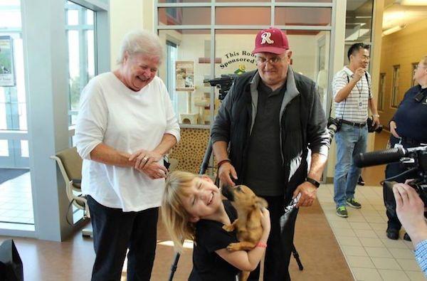 ヘロイン中毒の子犬が保護され新たな飼い主に出会う