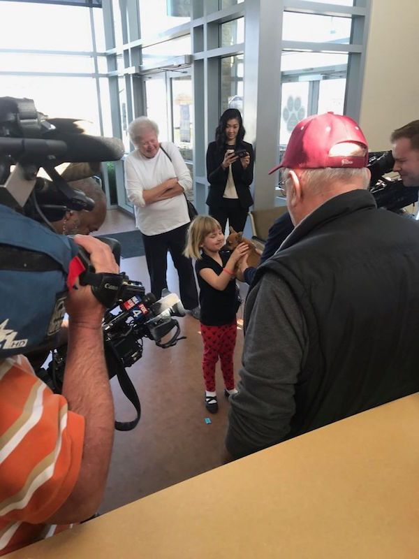 ヘロイン中毒だった子犬と少女を囲むメディア
