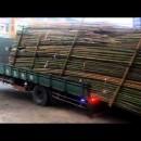 効率を求める中国のトラック運転手さん